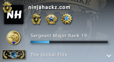 NinjaHackz CSGO Hack Account